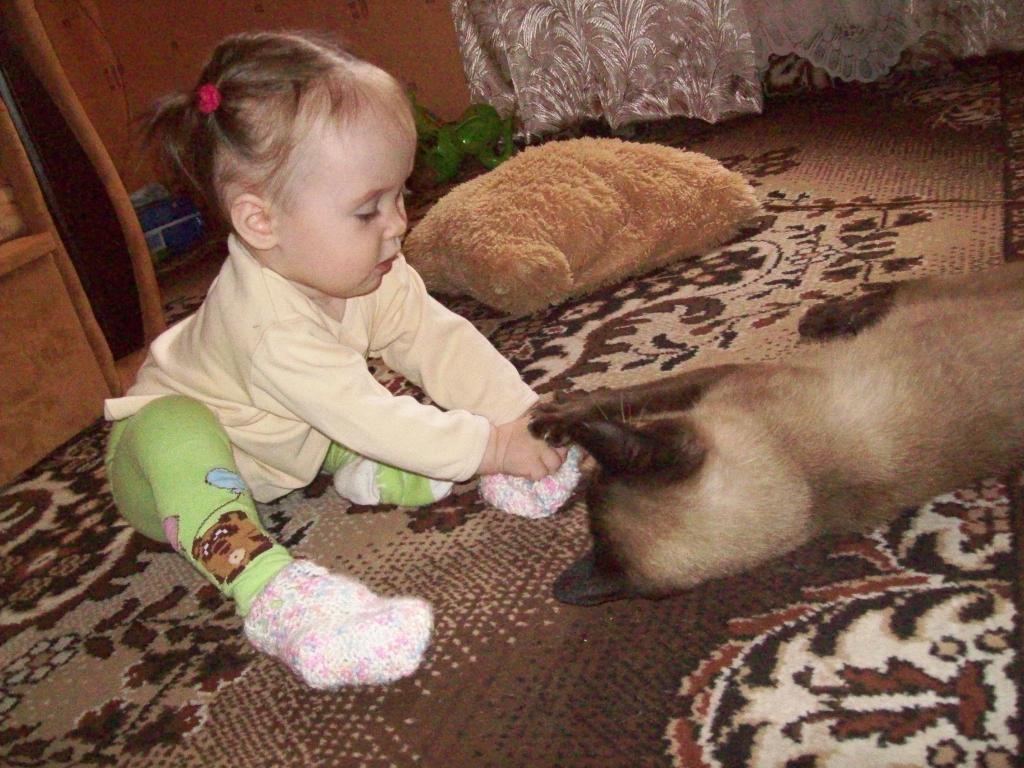 Куда!-я ещё не наигрался!!!!!!. Закрытое голосование фотоконкурса 'Кошки-мышки'
