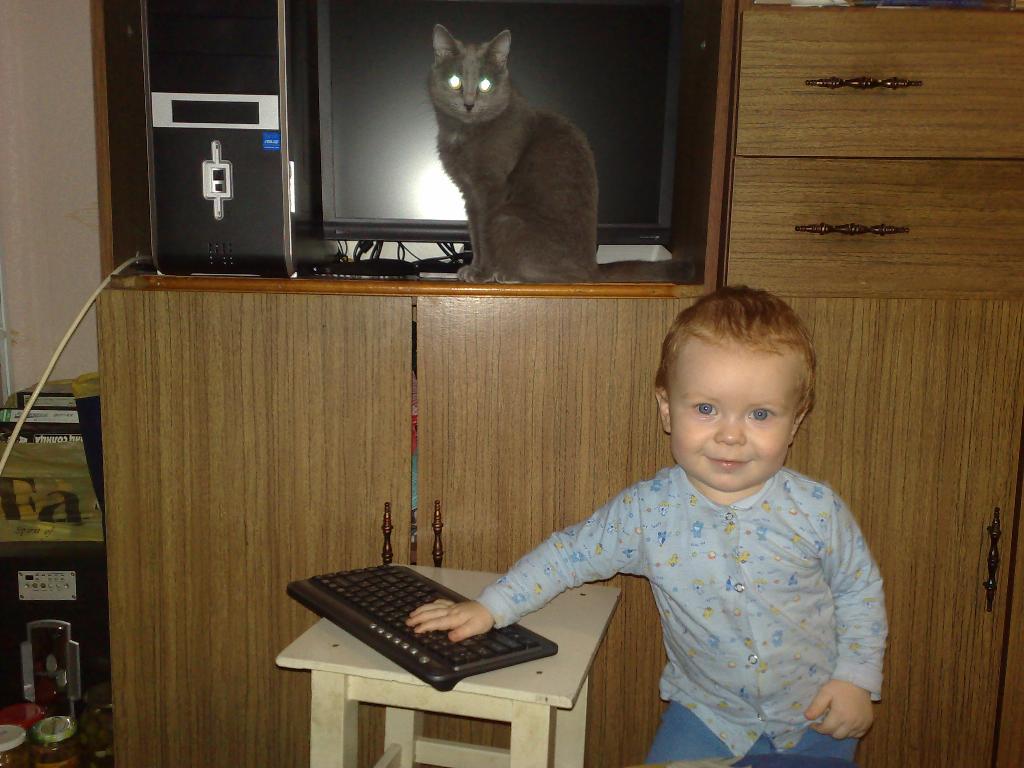 А 'мышку' съела кошка. Кошки-мышки