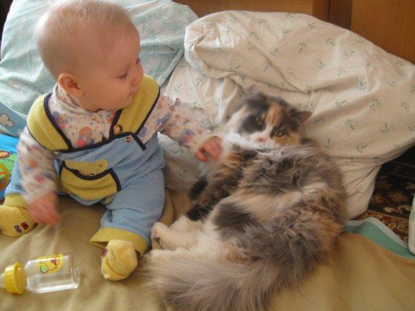 моя киса.. берегись.. скоро выросту..)). Кошки-мышки