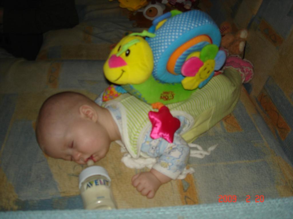 Как же сладенько я сплю. Закрытое голосование фотоконкурса 'Спят усталые игрушки'