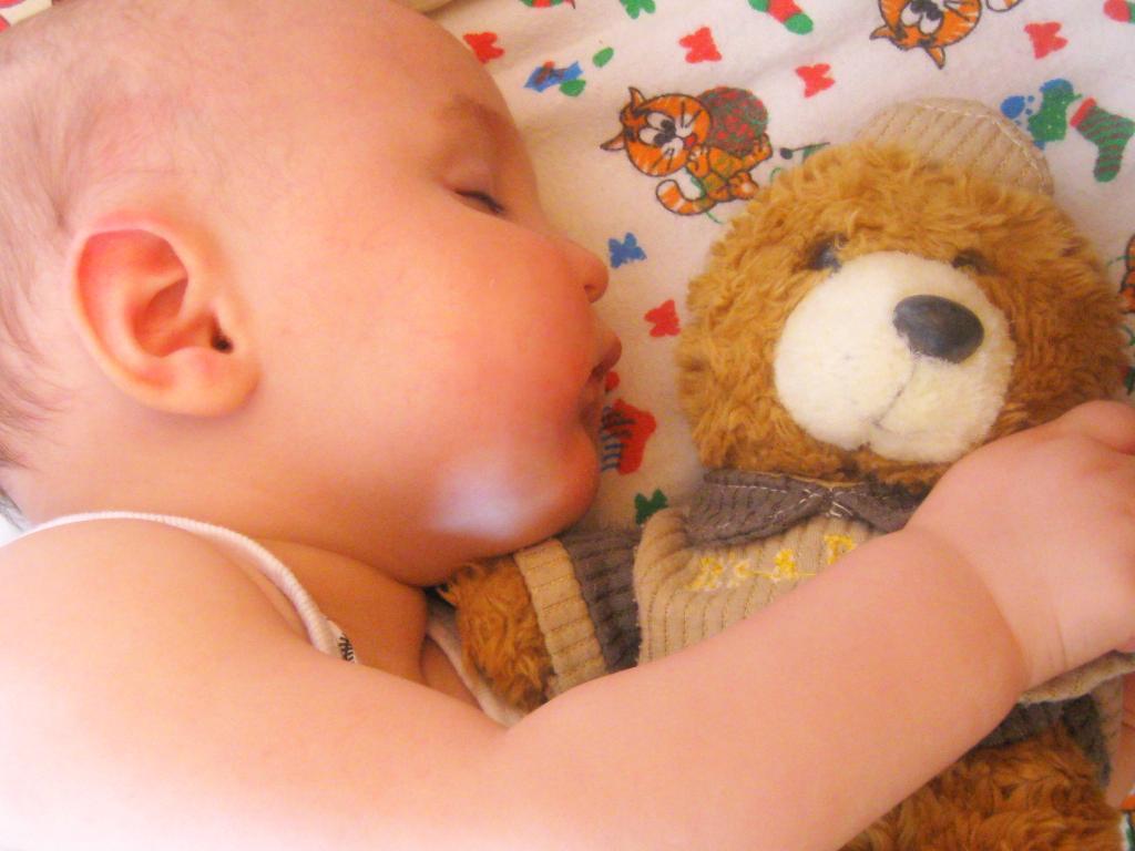 Сон. Закрытое голосование фотоконкурса 'Спят усталые игрушки'