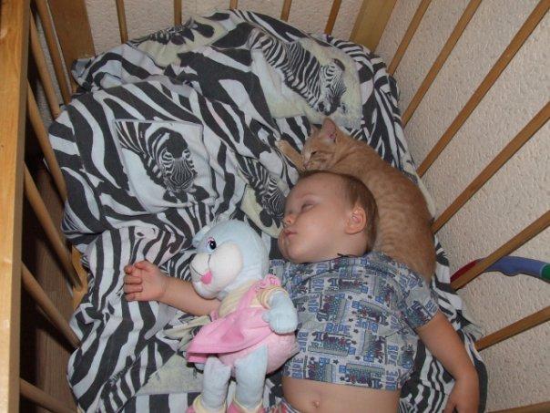 спят усталые малышки и игрушки и котятки)). Закрытое голосование фотоконкурса 'Спят усталые игрушки'