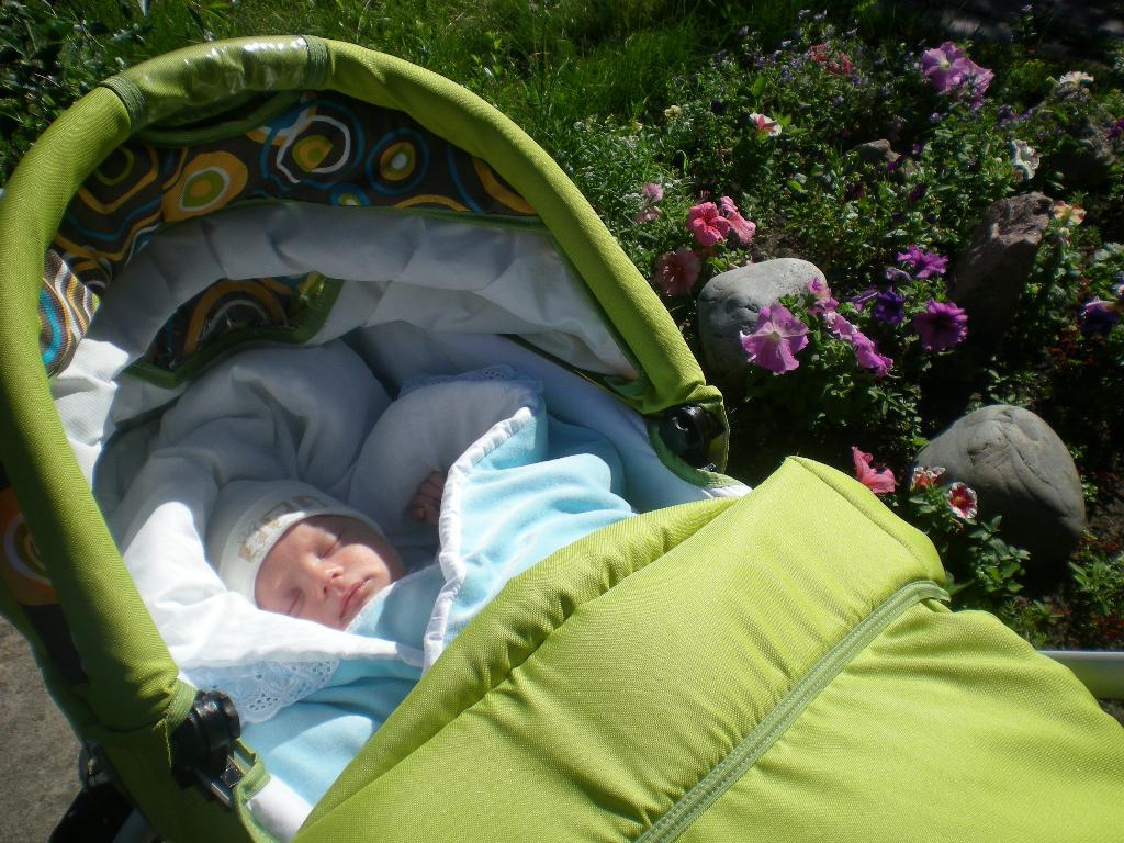 Вот Я на солнышке лежу! . Мое первое лето