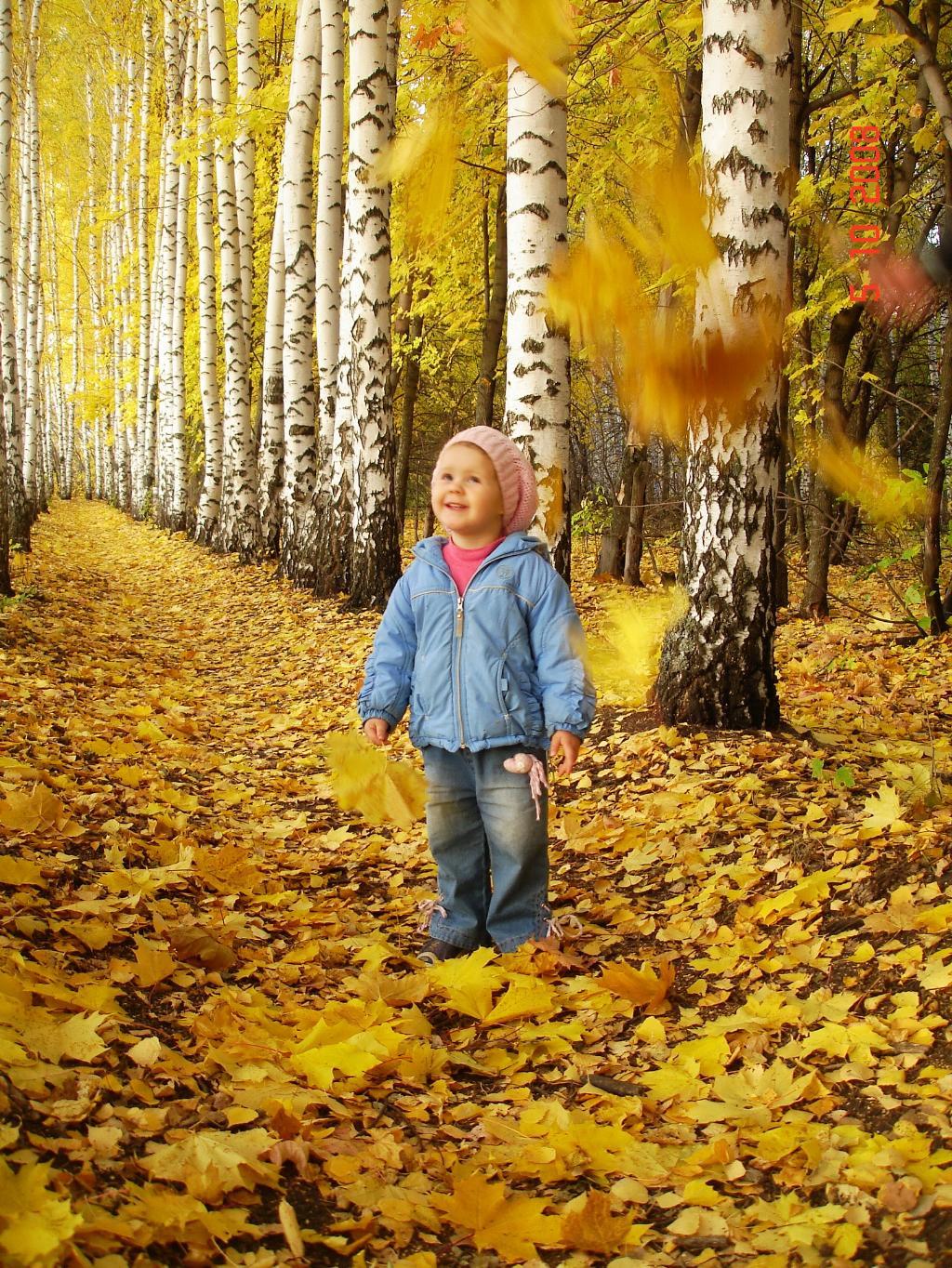 Как красиво!. Осенняя прогулка