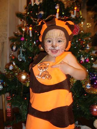 Не подходите близко, я тигрица, а не киска... . Новогодний карнавал