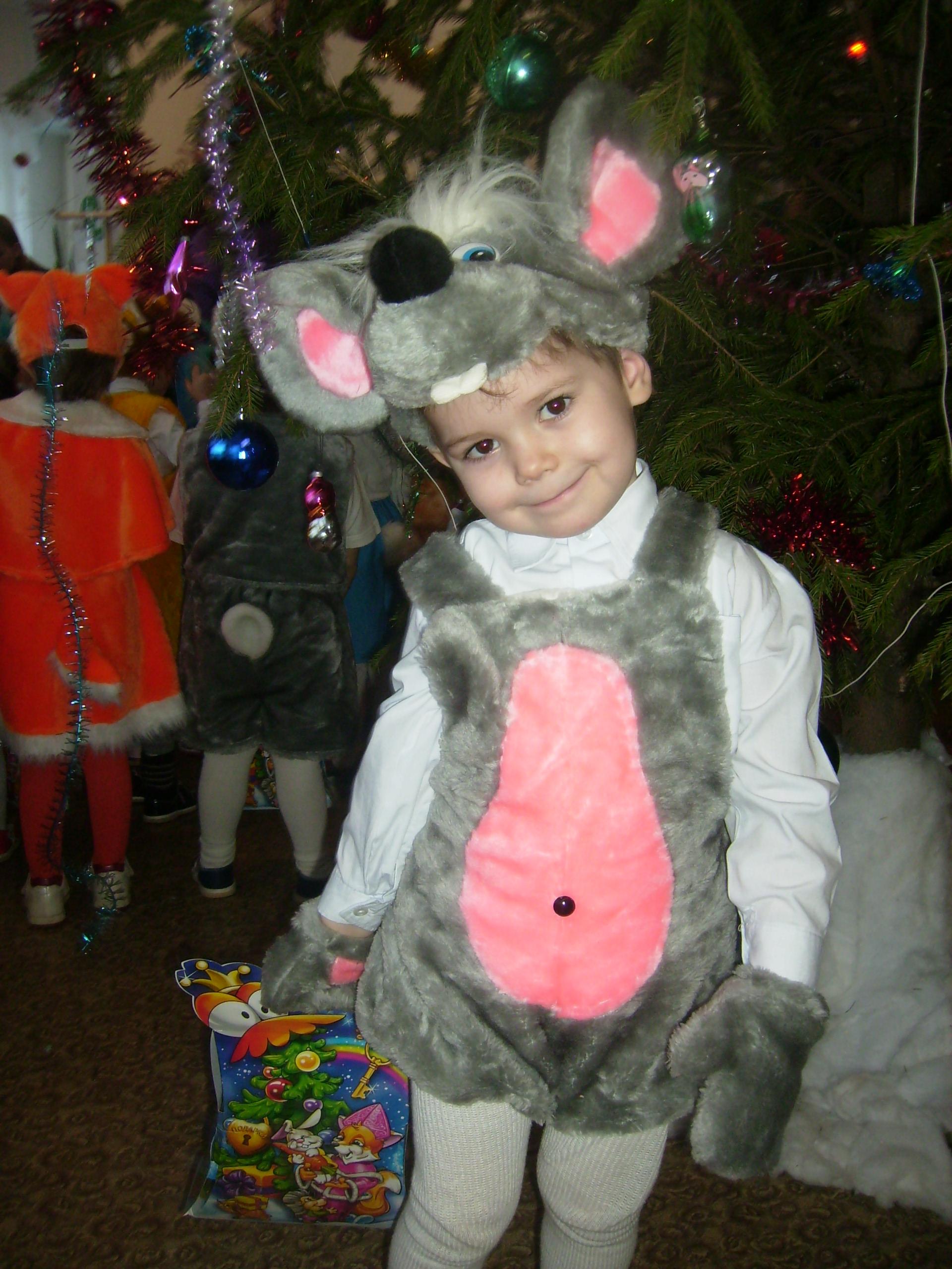 Мышь-очаровашка!. Новогодний карнавал