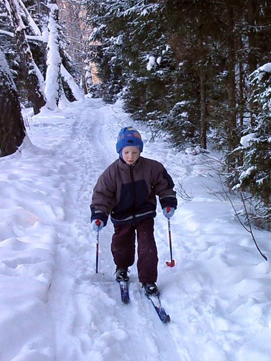 Готовлюсь в лыжную сборную!. Закрытое голосование фотоконкурса 'Моя тренировка'
