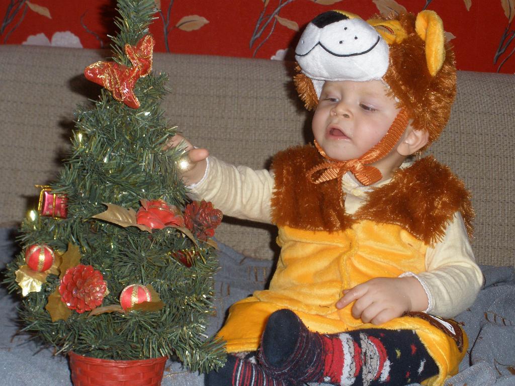 Наш тигрёнок. Новогодний карнавал