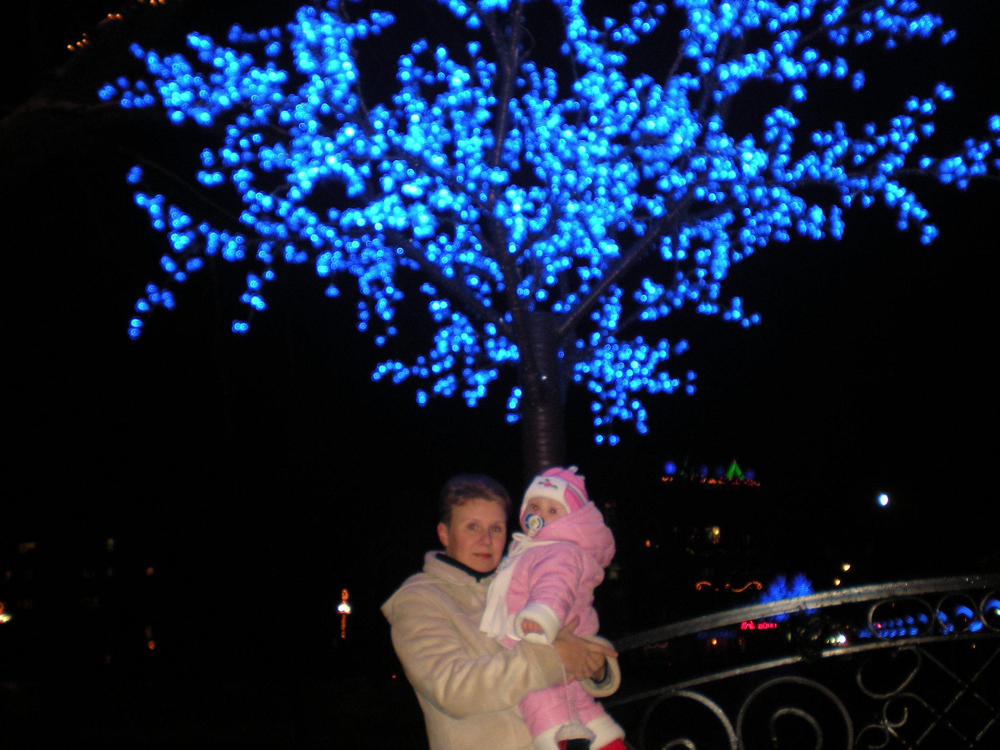новый год в Гусеве. С мамой на прогулке