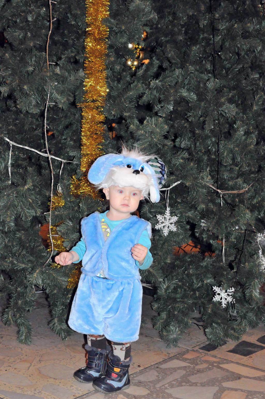 Новогодний зайчик. Закрытое голосование фотоконкурса 'Новогодний карнавал'
