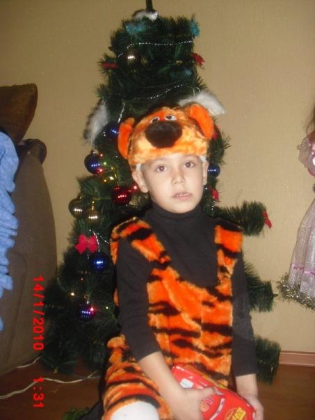 а мы  провожали год тигра . Новогодний карнавал