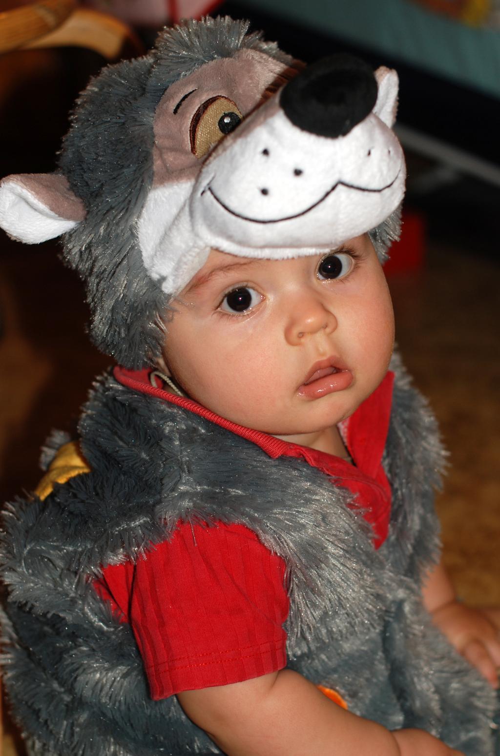 'Ёжик - самый пушистый в мире зверь!'. Новогодний карнавал