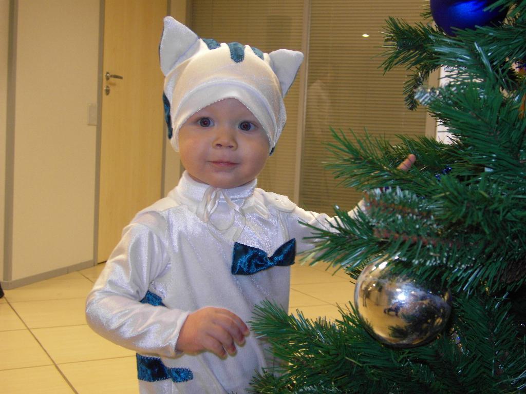 Белый кот. Новогодний карнавал