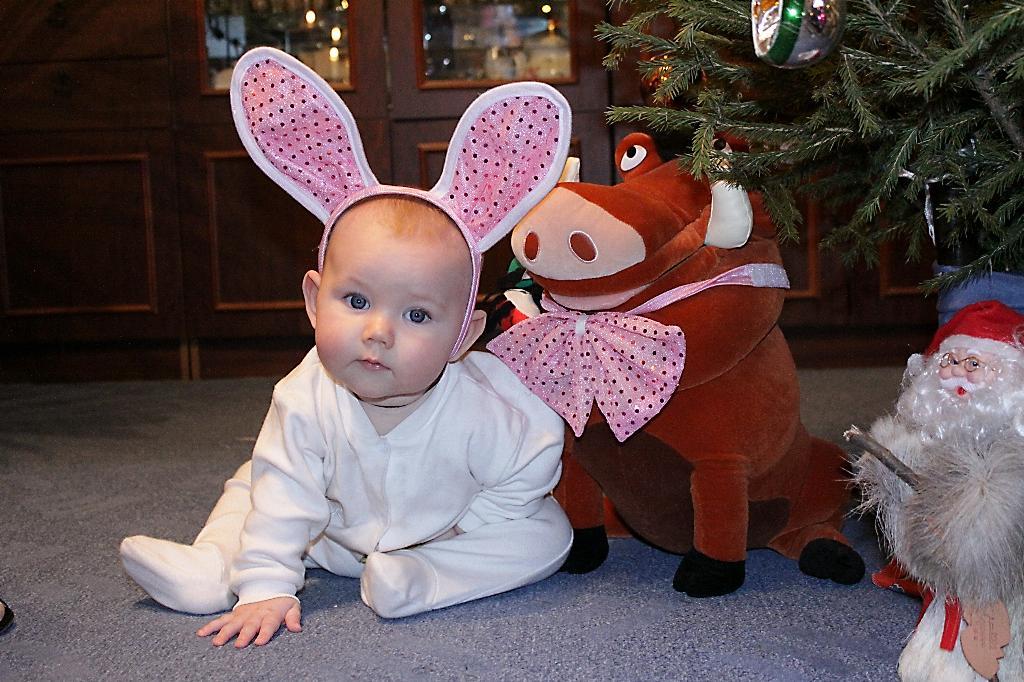 Белый Зайчишка. Новогодний карнавал