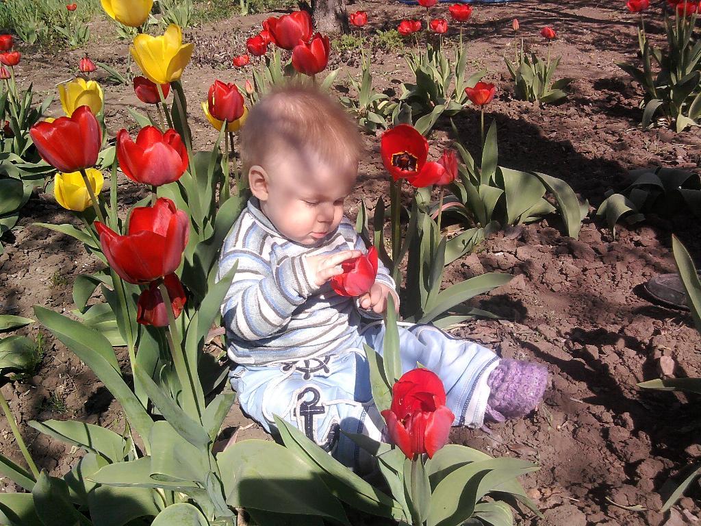 Малыш Арсений 'Любит не любит'.. Лето в стиле БИО