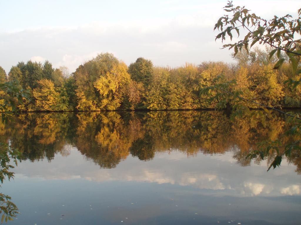 ЗОЛОТАЯ ОСЕНЬ  В КОЛОМЕНСКОМ. Блиц: осенние листья