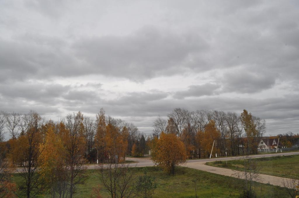 Осень-унылая пора! Вот такую осень вижу из окна!. Блиц: осенние листья