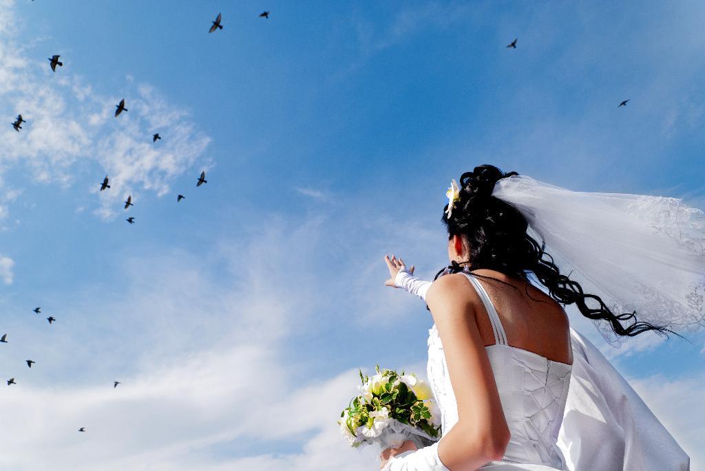 Птицы. Лучшее свадебное фото