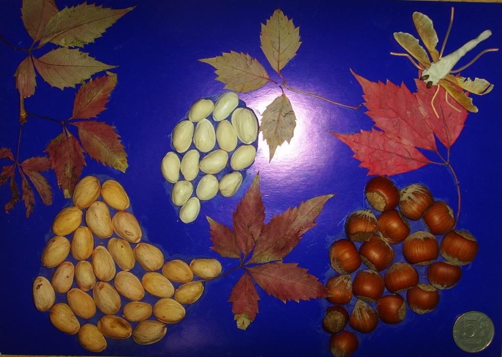 Стрекоза и виноград. Веселые поделки