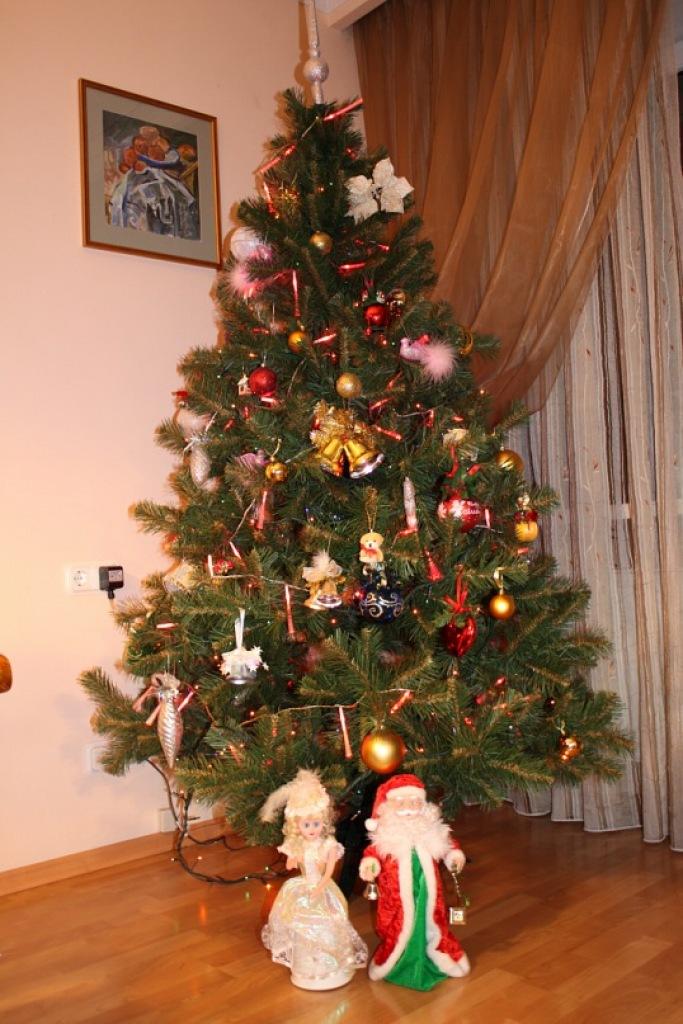 смотреть фото елка дома ммс картинки поздравления