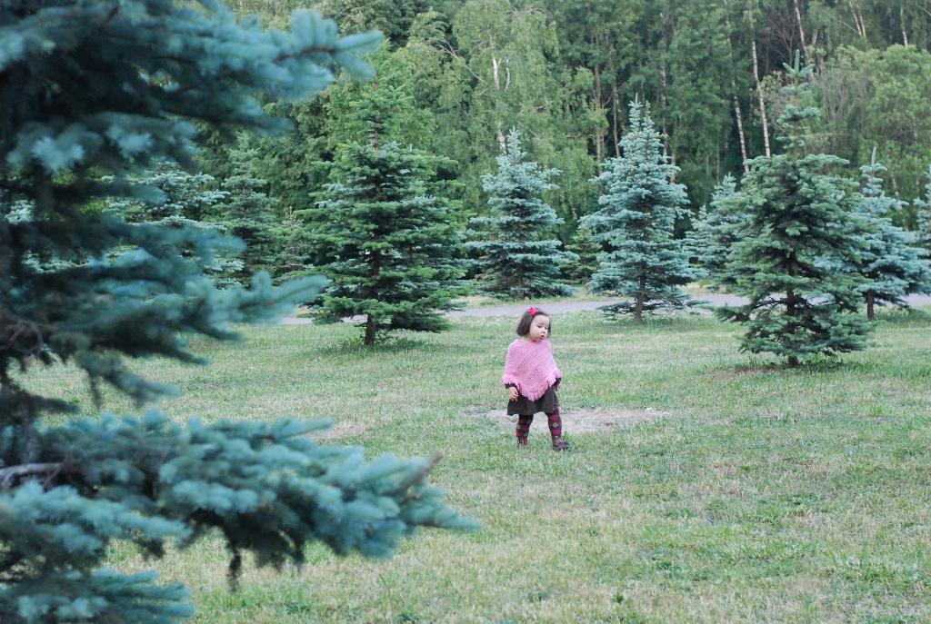 принцесса леса.