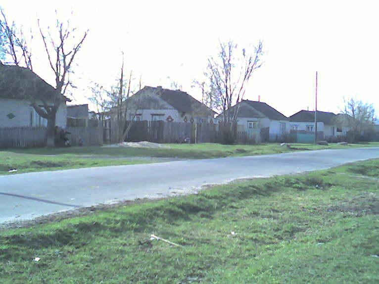 наш дом в середине с зеленым палисадником.