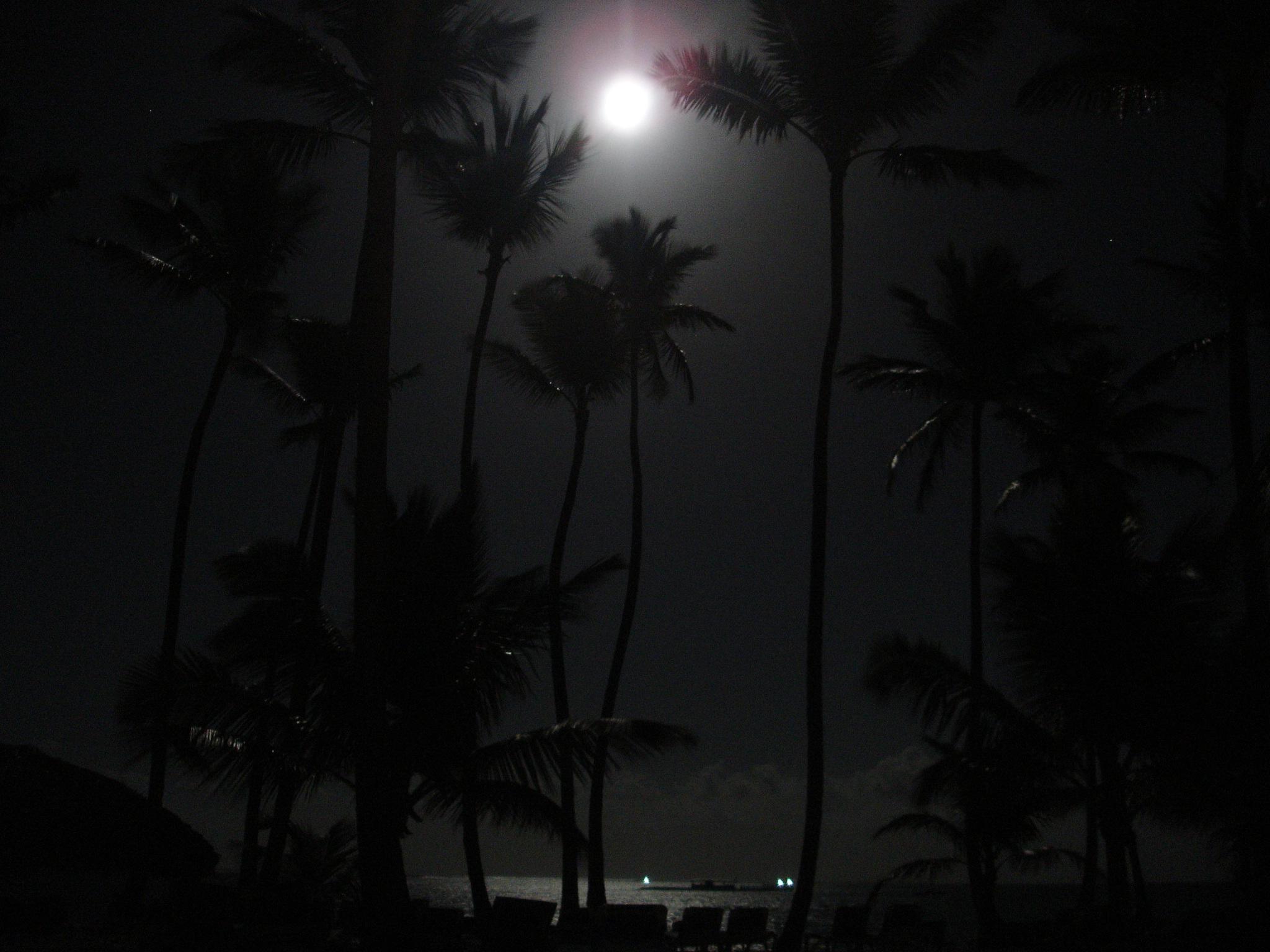 Ночка светлою была.... Блиц: небо
