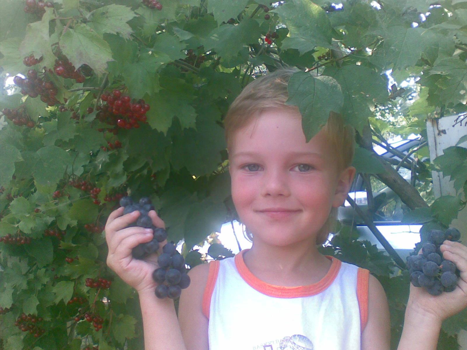 Вот они какие - ягодки!.