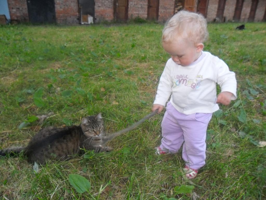 Доча))). Кошки и дети