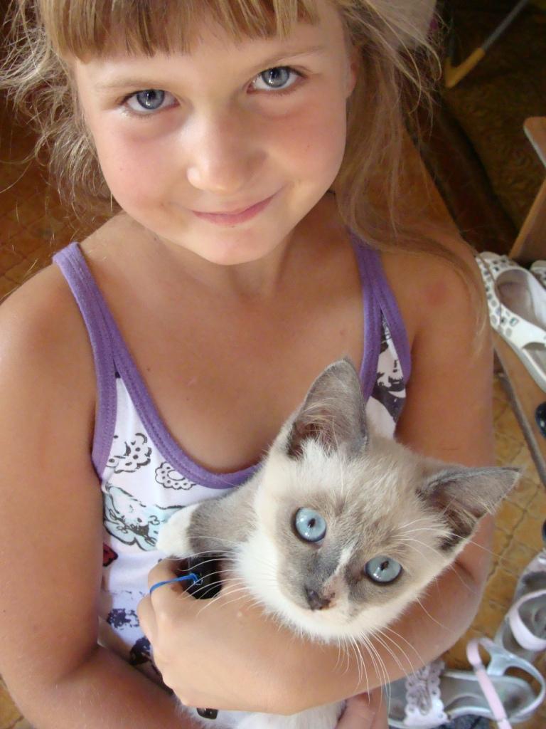 Голубоглаааазые,светловолоооосые.... Кошки и дети