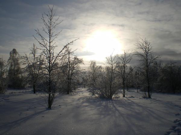 зима в Подмосковье. Блиц: рассветы и закаты