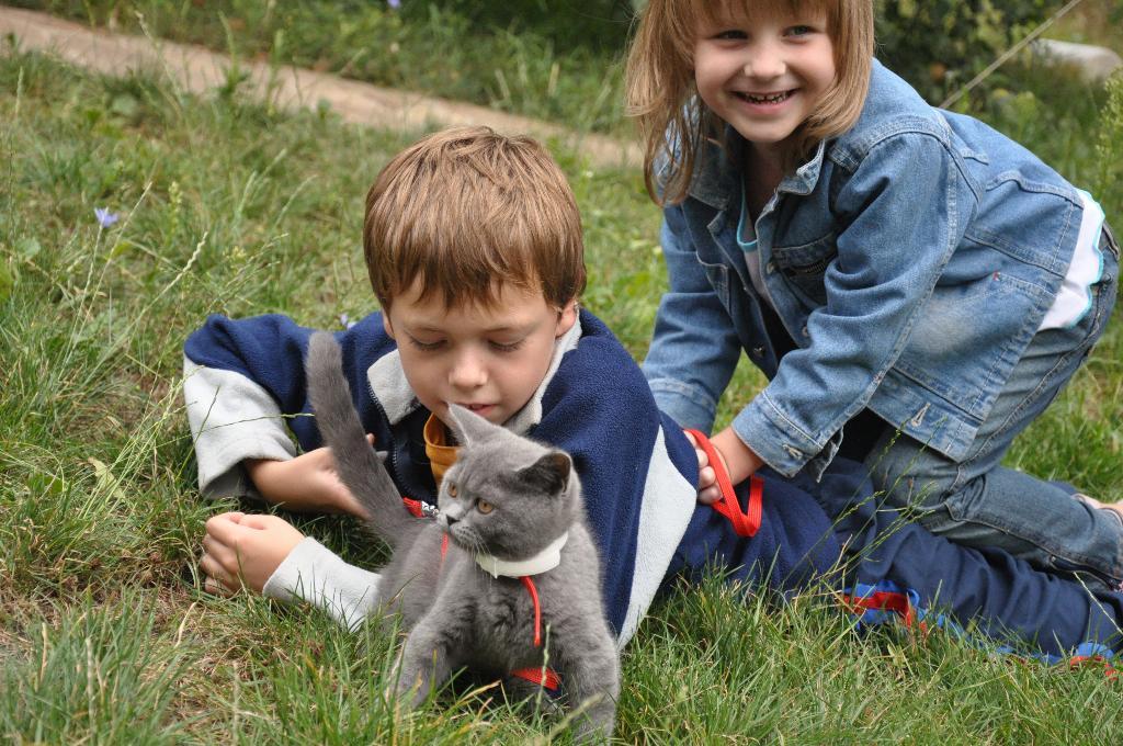 'Дракон' с острова Комодо:). Кошки и дети
