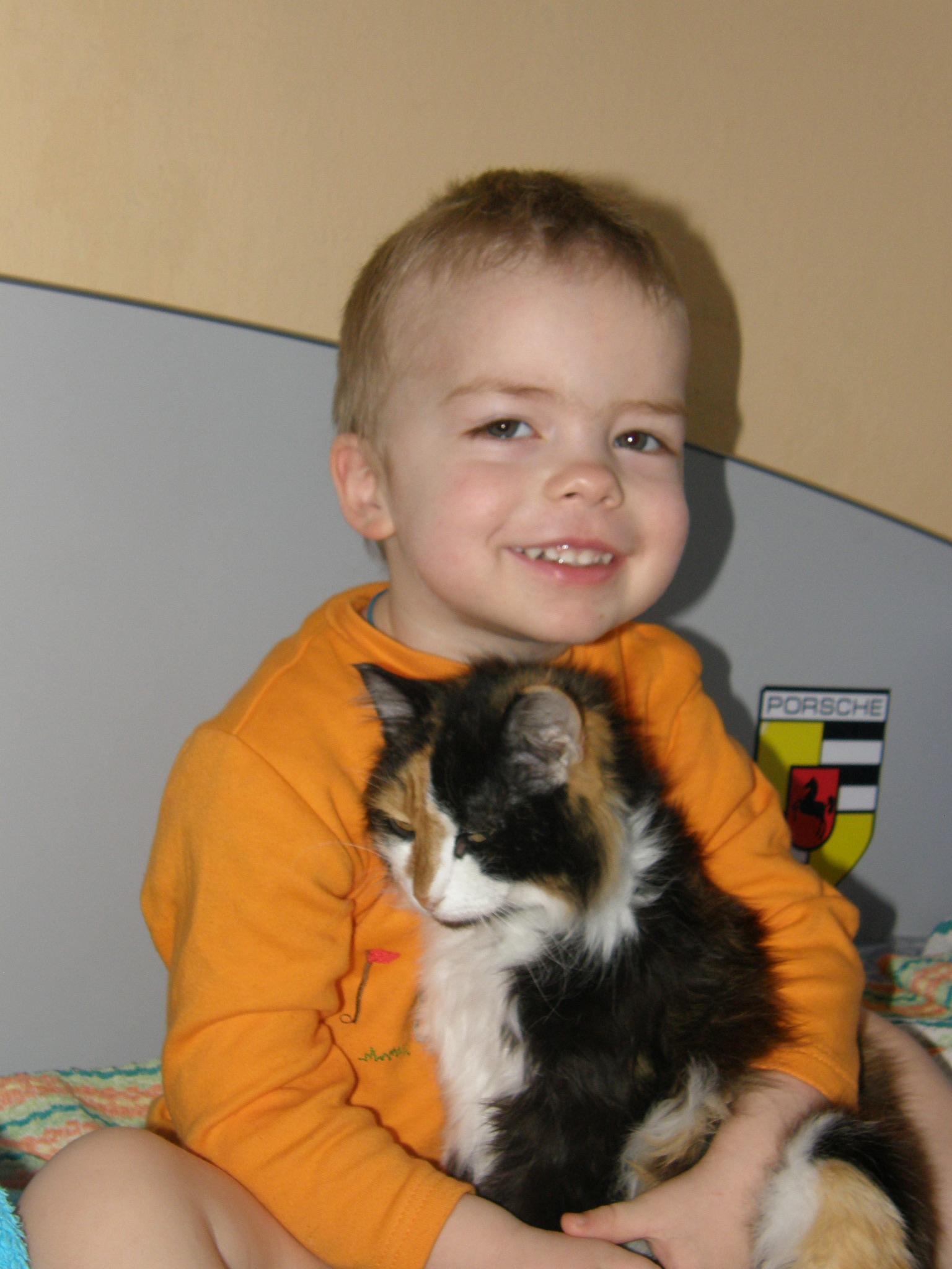 Друзья. Кошки и дети