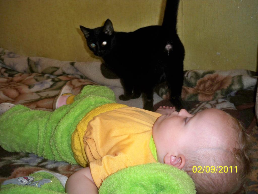 Моя киса охраняет днем и ночью мой чуткий сон!. Кошки и дети