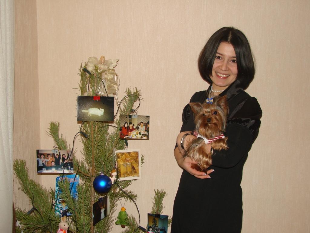ФотоЁлка. Блиц: новогодняя ёлка