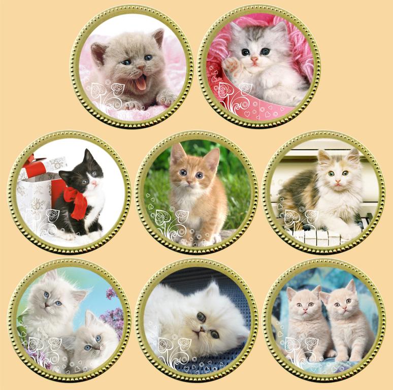 фасадных панелей картинка награда кошки империя предлагает