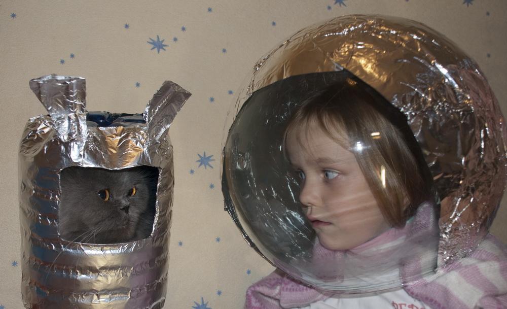 Будущее российской косМЯУнавтики. Закрытое голосование фотоконкурса 'Космическая одиссея'