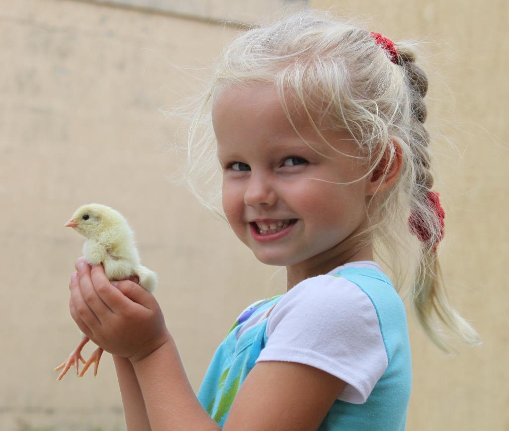 Есть дружочек у меня!!!Маленький цыпленок.!. Крылатые друзья