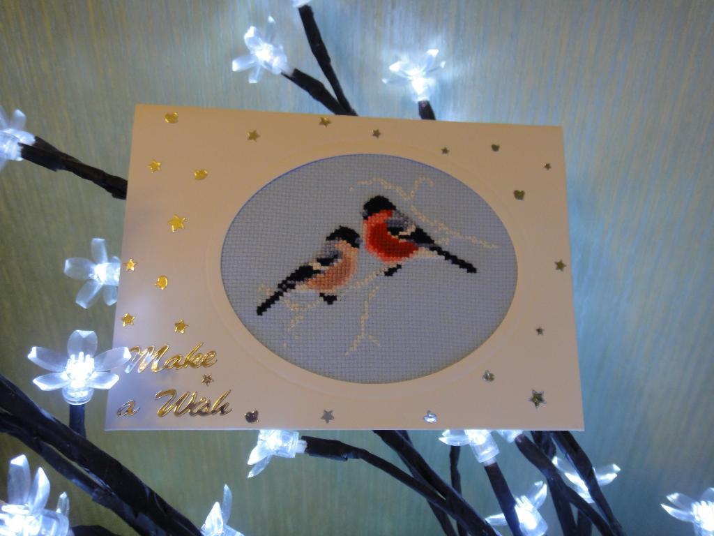 16 - Маркуша. 2012 Проект Зимняя открытка