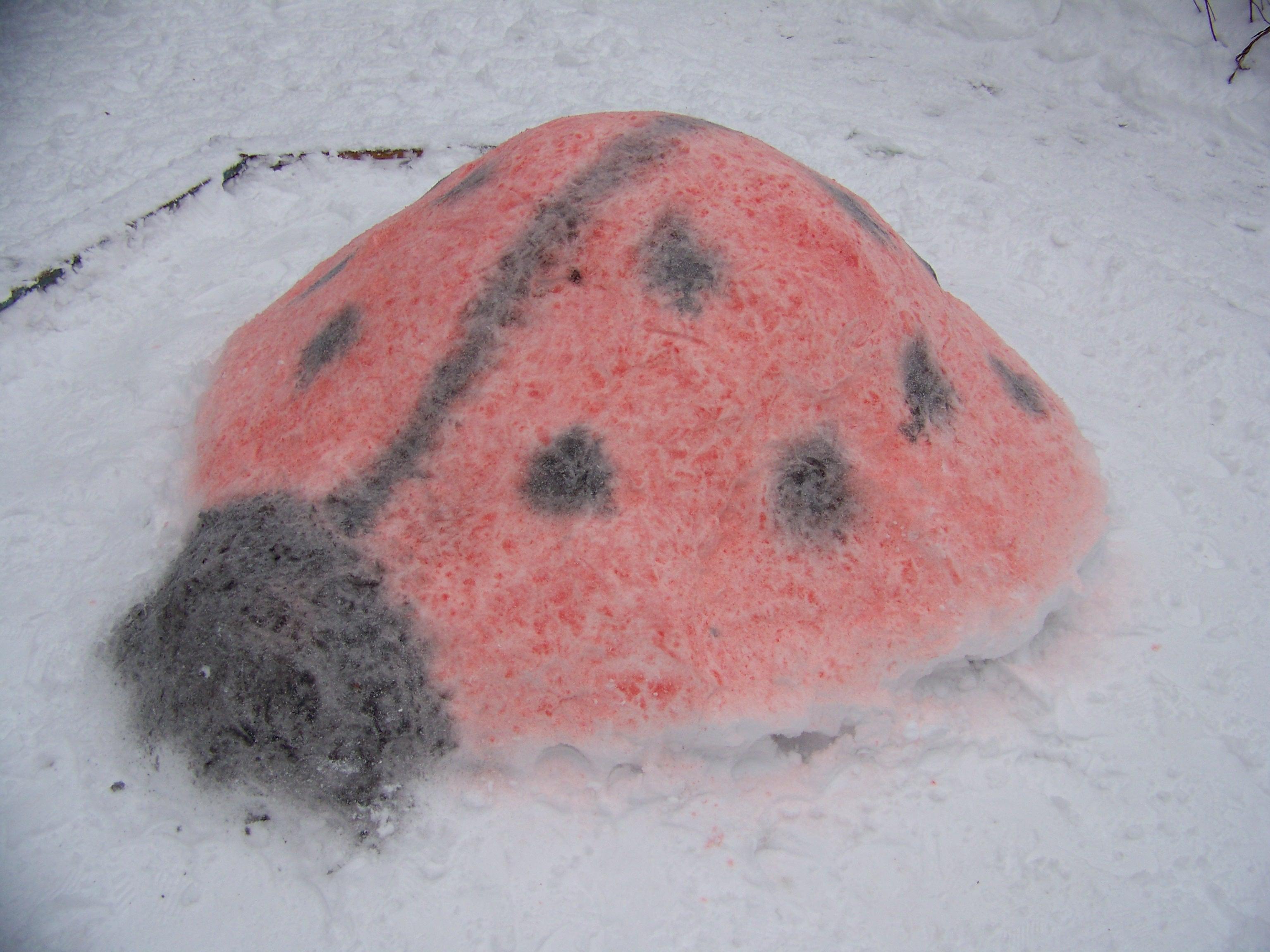 божья коровка. Блиц: фигуры из снега и льда
