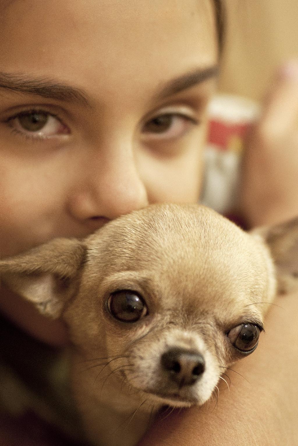 Дочка Настя со своей любимицей,.