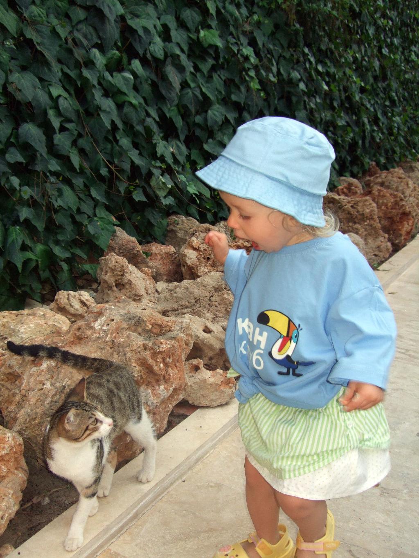 Даша знакомится с кошкой.