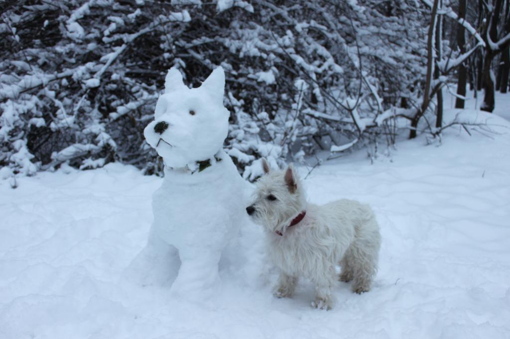 Постирайте меня, што ли, ариэлем?.... Блиц: фигуры из снега и льда