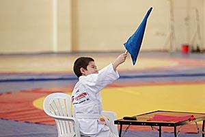 АРБ. 5-7 лет. Юные спортсмены