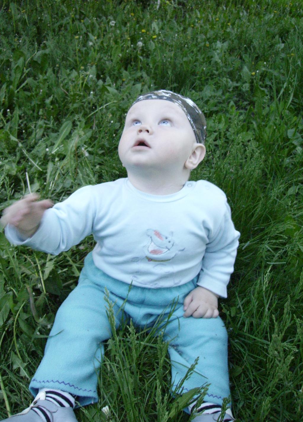 Сижу я на травке и в небо смотрю.....