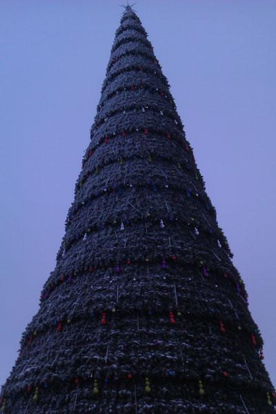 41-метровая елка