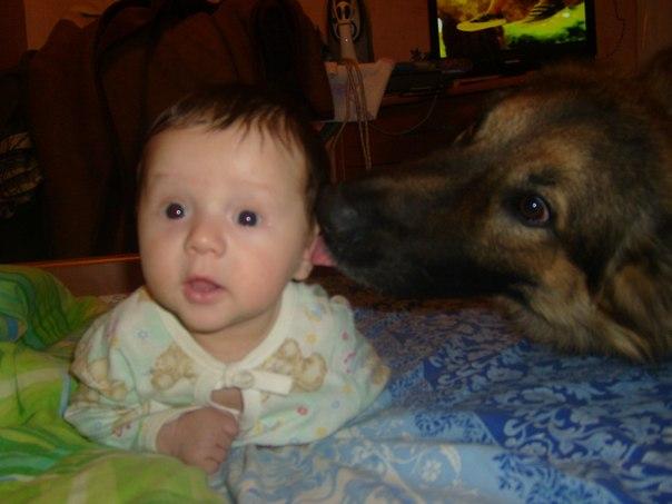 Собака друг человека!. Мамина радость: лучший мой подарочек - это...