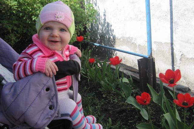 Ах, эти первые тюльпаны!. Цветочное настроение
