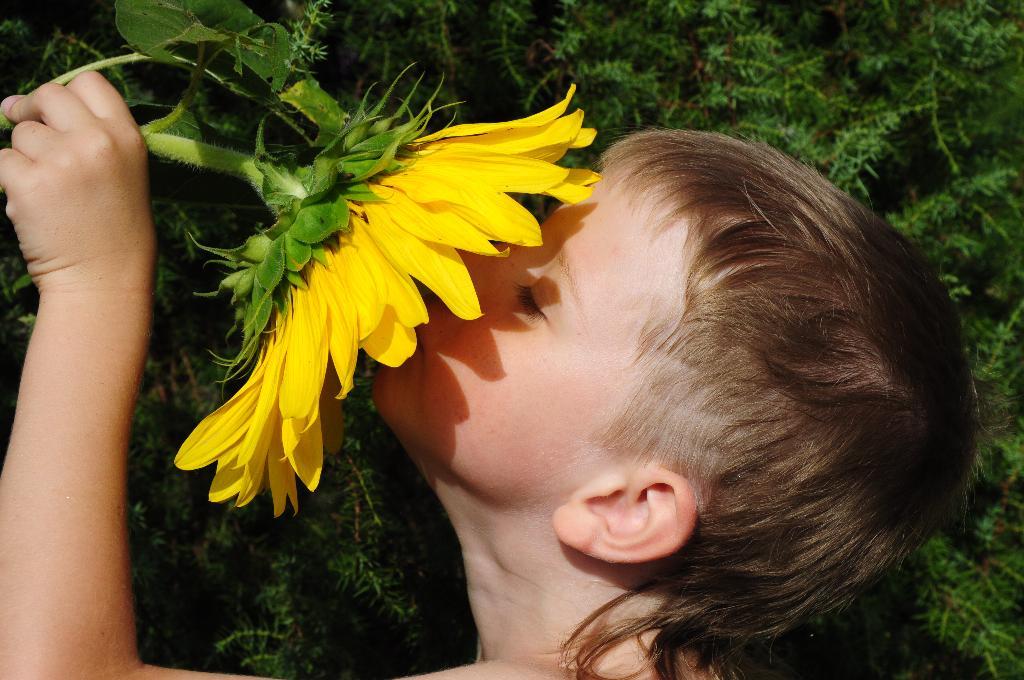 Два солнышка :). Цветочное настроение