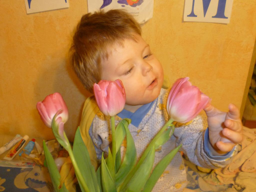 Тюльпаны для мамы.. Цветочное настроение